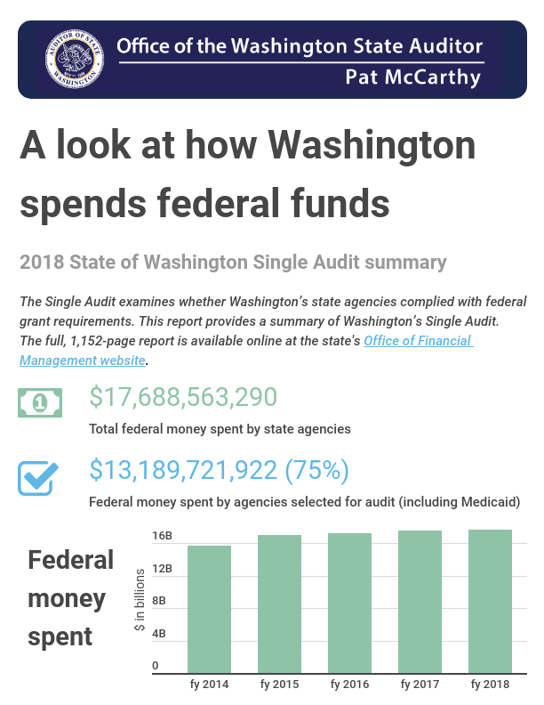 Infographic screen showing title of State of Washington Single Audit summary, and graphics depicting amount of federal money spent by state agencies
